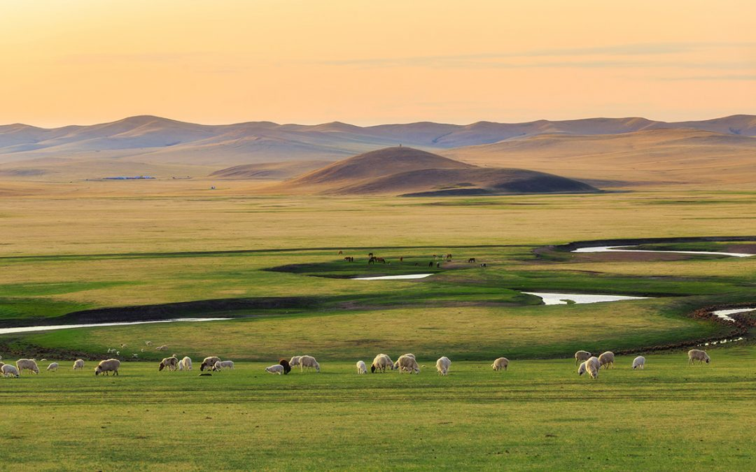 Mongolia: In the land of the eternal blue sky