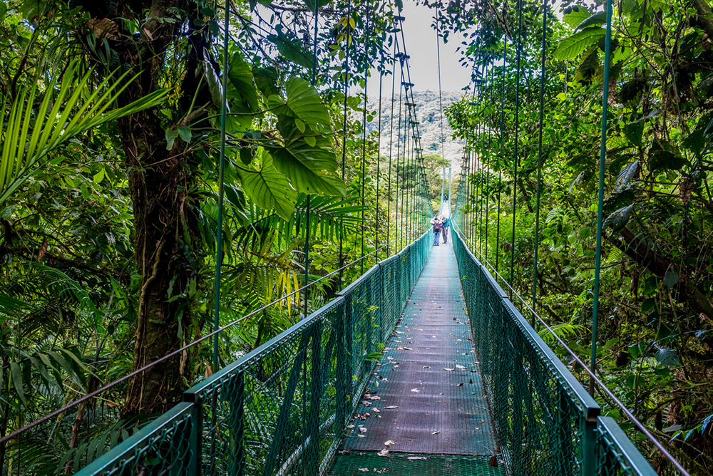 Pont suspendu en direction du volcan Arenal